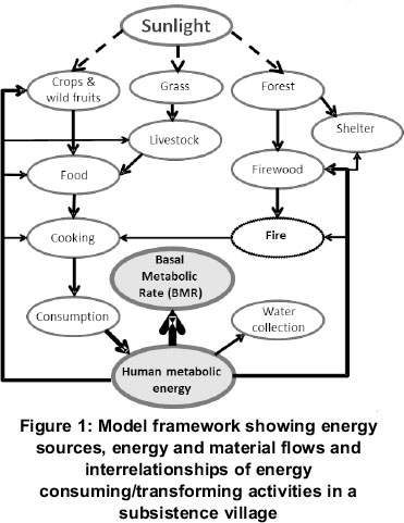 a conceptual diagram is presented on the major energy transfers and  transformations, material flows of the subsistence village, centred on  human consumption