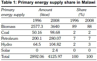 Energy supply in Malawi: Options and issues