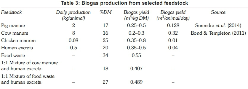 Potential for domestic biogas as household energy supply in