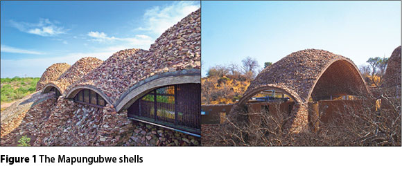 Three Lessons From The Mapungubwe Shells