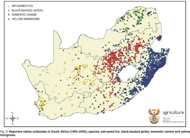 Rabies In South Africa Between And What Has Been Achieved - Map of rate of rabies in the us