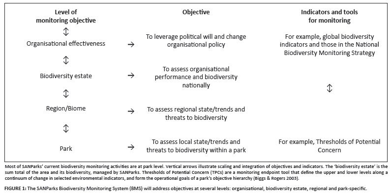 A strategic framework for biodiversity monitoring in South African ...