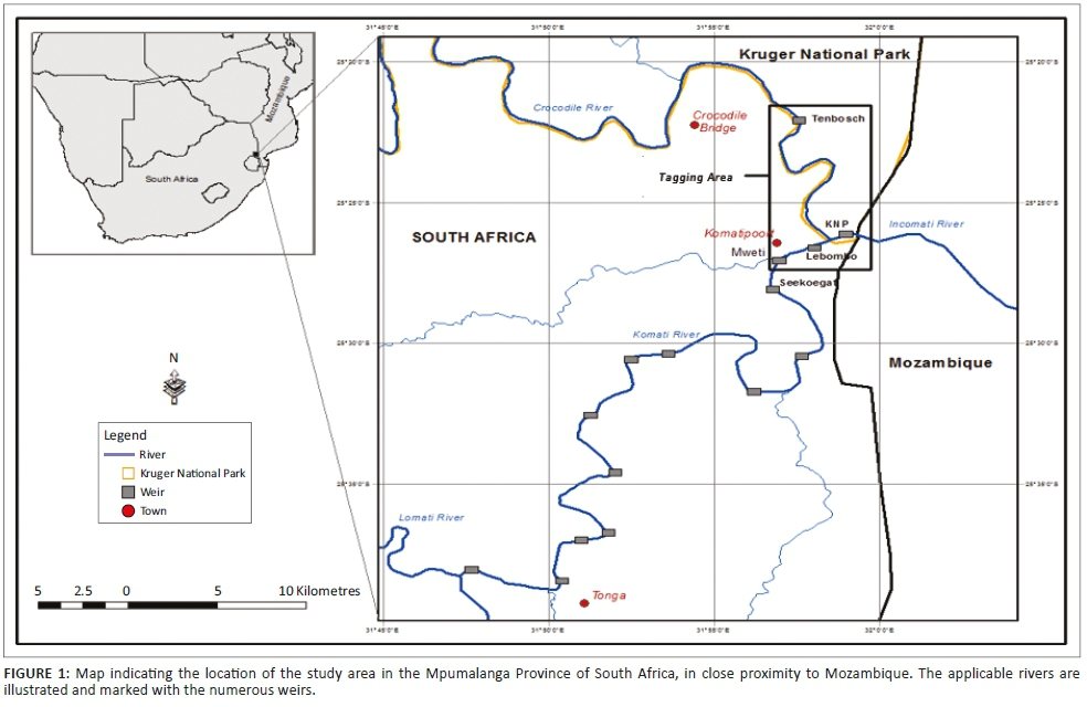 Plant communities of the uMlalazi Nature Reserve and their