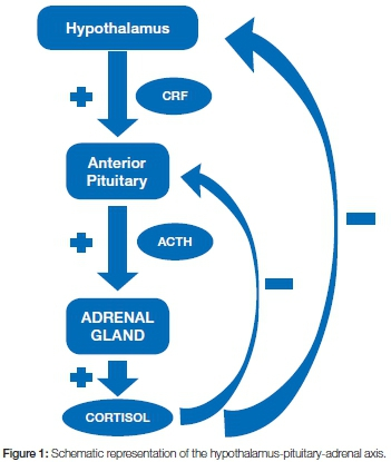 Glucocorticosteroids in the treatment of immune mediated