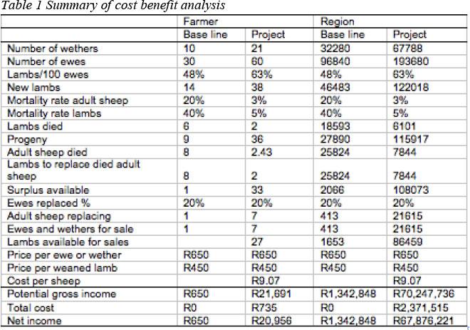 T Financial Modelling