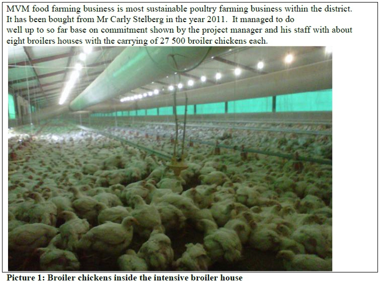 Broiler Farming Business Plan