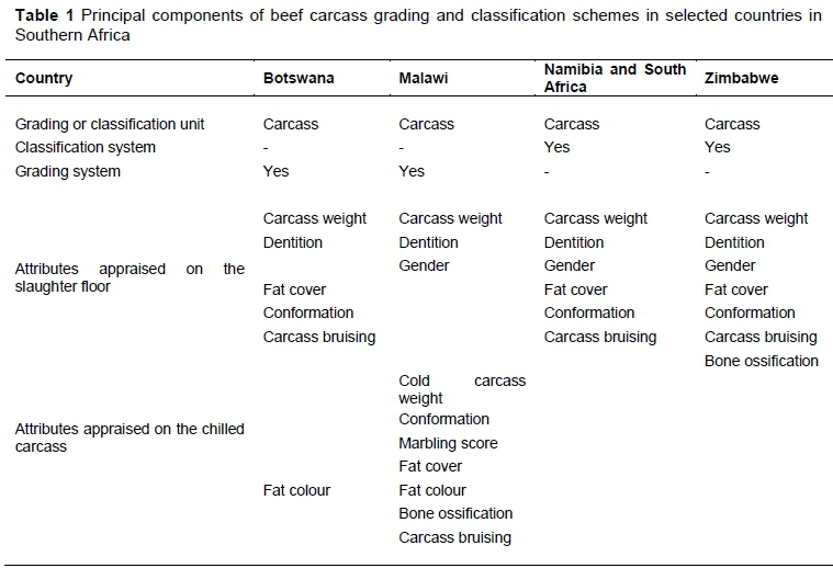 Towards a regional beef carcass classification system for Southern