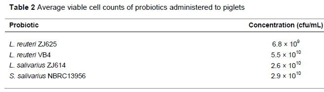 Probiotics S Salivarius Strain Blis M Food