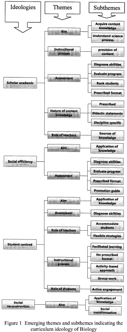 Causes of Inequality: Analytical Strategies