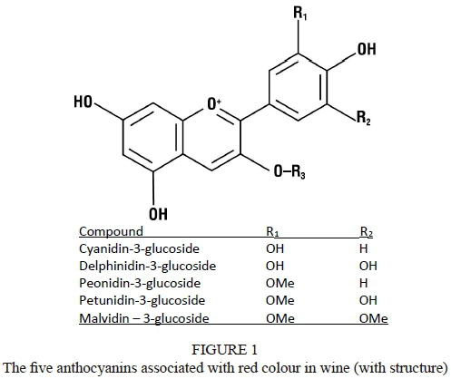 Tannins and anthocyanins: From their origin to wine analysis