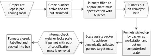 internal check system