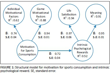 sports psychology motivation essay Health, sports & psychology  motivation and factors affecting motivation  you  have examined two of the theories of motivation to develop your understanding.