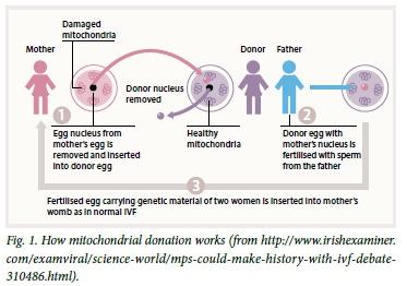 mutation based diseases