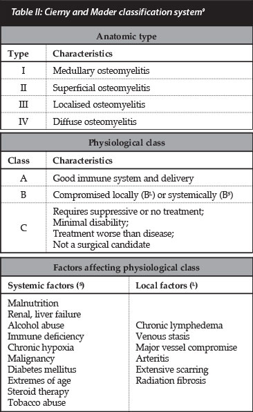 osteomyelitis essay