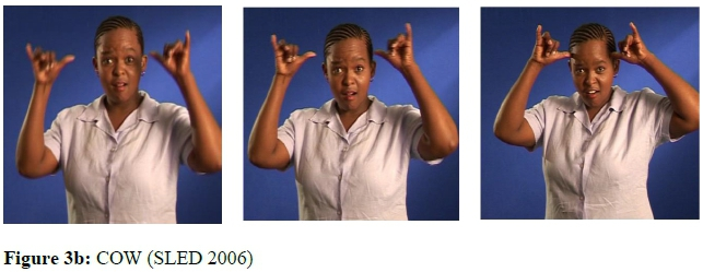 A perfect end: A study of syllable codas in South African Sign Language