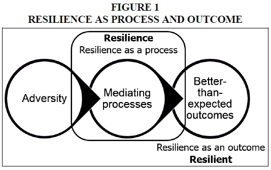 a critical review of resilience theory and its relevance