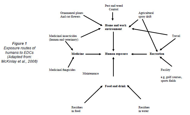 Médicinales maladies des plantes ornementales la lutte contre les maladies des plantes pdf plantes pdf